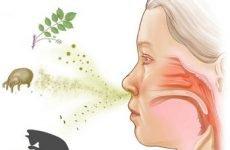 Алергічний нежить