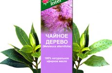 Допомагає від нежитю масло чайного дерева?