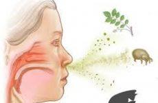 Як лікувати алергічний нежить?