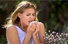 Класифікація, симптоми і способи лікування алергічного риніту
