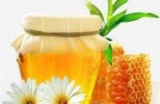 Мед від нежитю, лікування за допомогою меду в домашніх умовах — рецепти народної медицини