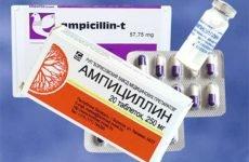 Що краще при ангіні — Ампіцилін або Пеніцилін