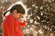 Що таке алергічний нежить і з-за чого він виникає?