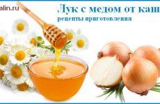 Цибуля з медом від кашлю рецепт приготування