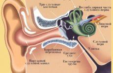 Симптоми і лікування баротравми вуха, причини