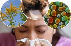 Алергічний бронхіт