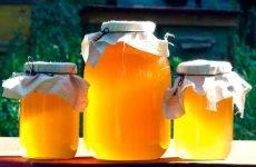 Всі народні міфи про мед при ангіні: що правда, а що — вигадка?