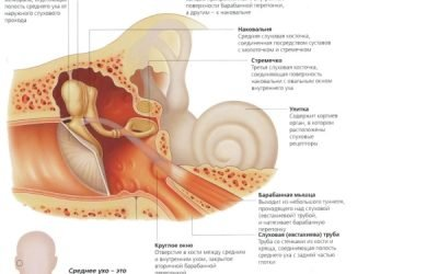 Адгезивний середній отит – лікування і симптоми