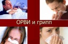 Найбільш ефективні та недорогі противірусні препарати для дорослих