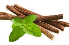 Сироп солодки від кашлю – інструкція по застосуванню