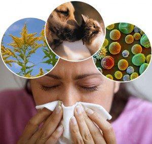 Алергічний синусит симптоми і лікування