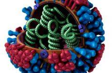 Чи потрібно пити антибіотики при грипі та застуді у дорослих і дітей?