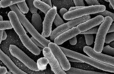 Чи можна при грипі пити антибіотики?
