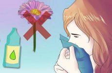 Алергічний риніт: повна інформація про симптоматиці, діагностиці та лікуванні захворювання