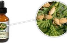 Лікування гаймориту рослинними і ефірними маслами