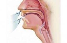 Як відновити слизову носа – чим зволожити носоглотку