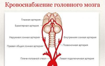 Таблетки від запаморочення при шийному остеохондрозі: симптоми, ліки і методи лікування,