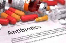 На який день знижується температура після антибіотиків