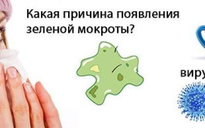 Зелена мокротиння у горлі – що за симптом, як лікувати