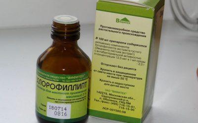 Хлорофіліпт від нежитю – як застосовувати, відгуки, побічні ефекти