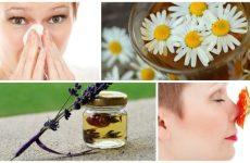 14 найбільш ефективних народних засобів для лікування синуситу