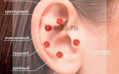 Болить козелок вуха при натисканні – причини