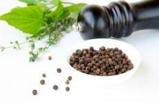 Чорногірський рецепт від нежиті з чорним перцем: лікування риніту відваром