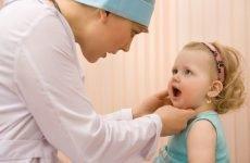 Червоне горло у дитини і дорослого: чим лікувати в домашніх умовах швидко