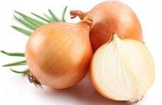 Лікування цибулею нежиті: рецепти та використання соку з овочів