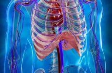 МЛС, ШЛС і генералізований туберкульоз – 7 небезпечних наслідків