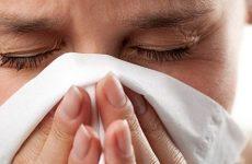 Чи можна вилікувати гайморит без антибіотиків – 9 способів лікування