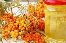 Обліпихова олія при гаймориті: застосування для лікування
