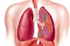Пневмоконіоз – 3 стадії: класифікація та лікування, чим небезпечний?