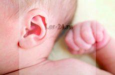 Чому болить вухо-у вусі і за вухом – причини і лікування в домашніх умовах