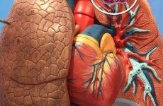 Рак легенів – 8 причин виникнення, заразний він і як починається?