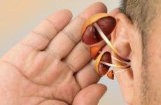 Лущення у вухах: причини і лікування лупи і сухості