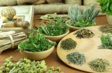 Трави при гаймориті: які найбільш корисні для лікування?