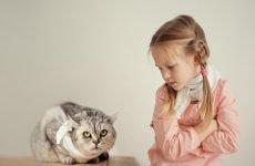 Білі точки в горлі у дорослих – причини появи бляшок