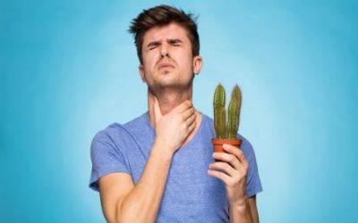 Біль у горлі при ковтанні без температури – як пом'якшити і вилікувати