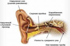 Перекис водню від пробок у вусі: інструкція по застосуванню