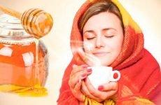 Чим корисний мед при простудному захворюванні: цілющі властивості та рецепти