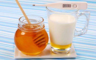 Користь молока з медом від застуди: цілющі властивості та рецепти